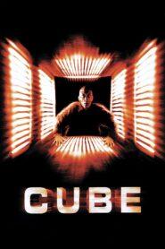 Cube zalukaj