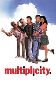 Multiplicity zalukaj