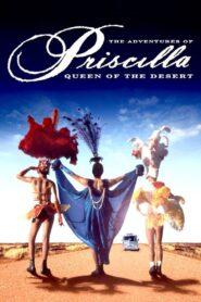 Priscilla, królowa pustyni zalukaj