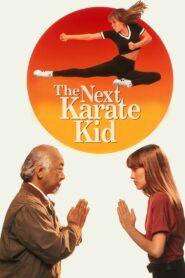 Karate Kid IV: Mistrz i uczennica zalukaj