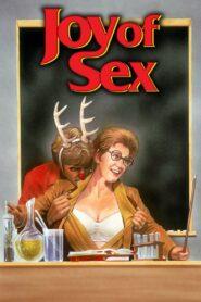 Joy of Sex zalukaj