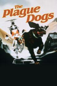 The Plague Dogs zalukaj