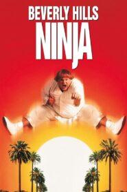 Wielki Biały Ninja zalukaj