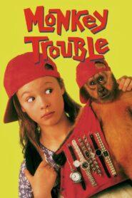 Monkey Trouble zalukaj