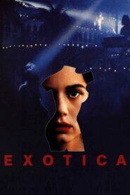 Klub Exotica zalukaj