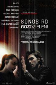 Songbird. Rozdzieleni zalukaj