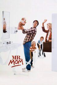 Mr. Mom zalukaj