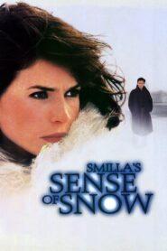 Smilla's Sense of Snow zalukaj