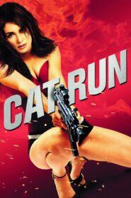 Uciekający kociak zalukaj