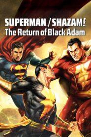DC Showcase: Superman/Shazam!: The Return of Black Adam zalukaj