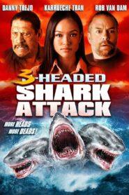 Trójgłowy rekin atakuje zalukaj