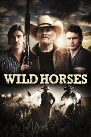 Wild Horses zalukaj