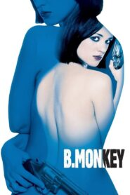 B. Monkey zalukaj