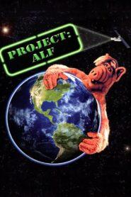 Project: ALF zalukaj