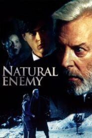 Natural Enemy zalukaj