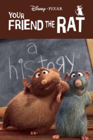 Twój przyjaciel szczur zalukaj