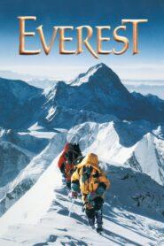 Everest zalukaj