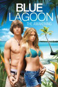 Błękitna laguna: Przebudzenie zalukaj