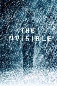 Niewidzialny zalukaj