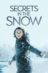 Killer Secrets in the Snow zalukaj