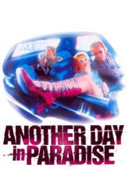 Another Day in Paradise zalukaj
