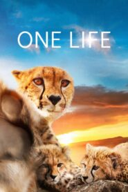 One Life zalukaj